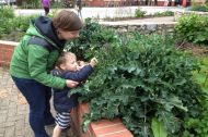 Mother & child picking some broccoli from Chapter Arts Centre Community Garden. Designer - Michele Fitzsimmons