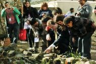 Visitors look at at pond - Adamsdown Community Garden